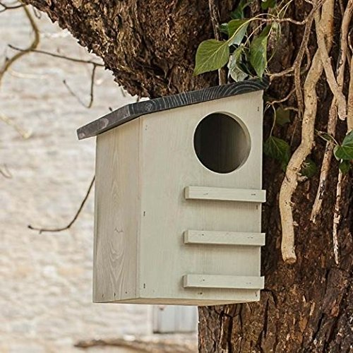 CKB Ltd Squirrel House Nesting Box Made from Pine Wood Outdoor Wildlife (Squirrel Nesting Box)