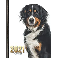 2021 Planner: Bernese Mountain Dog Photo / Daily Weekly Monthly / Dated 8.5x11 Life Organizer Notebook / 12 Month…