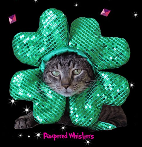 Pampered Whiskers Shamrock Hat for Dogs and Cats