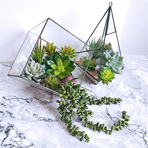 Pack of 11 Assorted Artificial Succulents Picks Faux Aloe String of Pearl Floral