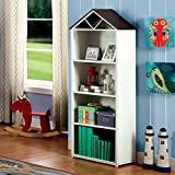 Furniture of America Houzer Contemporary Metal Two-Tone 4-shelf Bookcase