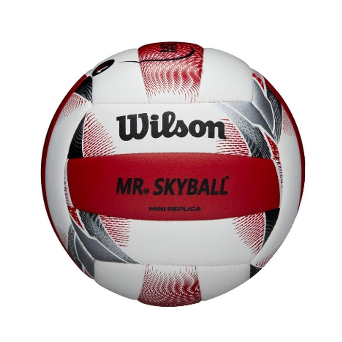 Wilson - Mini balón de Voleibol de Playa: Amazon.es: Deportes y ...