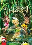 Disney Fairies #20:
