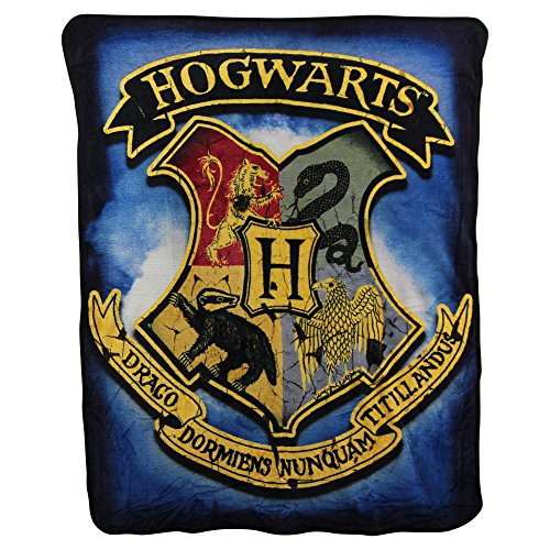 Northwest Kid's Colorful Character Micro Raschel Throw Blanket 46'' x 60'' (Hogwarts Houses) by Northwest (Image #1)