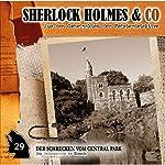 Der Schrecken vom Central Park (Sherlock Holmes & Co 29) | Patrick Holtheuer