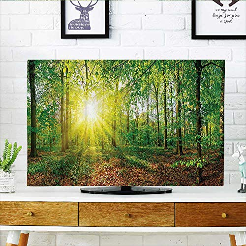 Auraisehome Cord Cover for Wall Mounted tv Decor Collection Glade in The Forest at Sunset Evening Meadow Greenland Mother Earth Cover Mounted tv W32 x H51 INCH/TV 55
