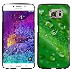 Exotic-Star ( Green Water Drop Leaf 2 ) Fundas Cover Cubre Hard Case Cover para Samsung Galaxy S6 / SM-G920 / SM-G920A / SM-G920T / SM-G920F / SM-G920I