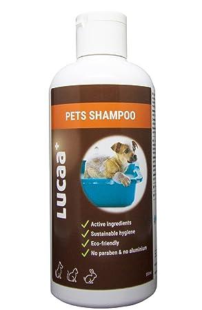 LUCAA+ Champú para Mascotas/Perros/Gatos 300ml | Producto sostenible con Probióticos | Bio, Vegano & Natural