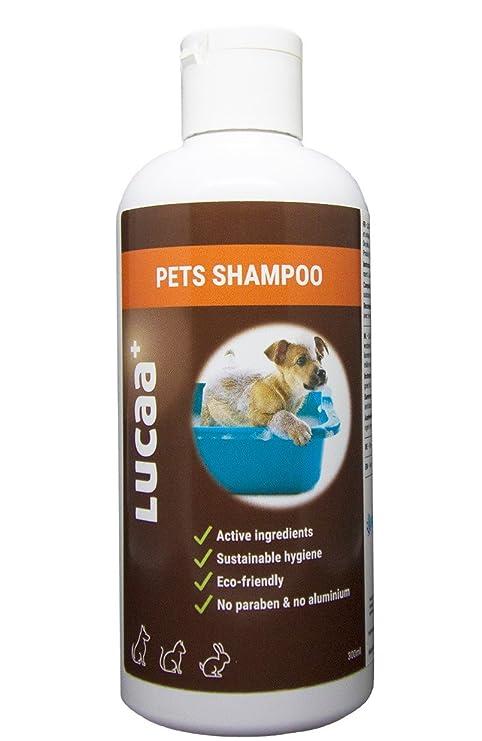 LUCAA+ Champú para Mascotas/Perros/Gatos 300ml | Producto sostenible con Probióticos | Bio
