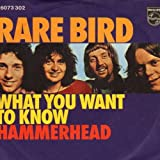 Rare Bird - What You Want To Know - Philips - 6073 302