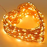 30M(99ft) 300Led Fairy String lights, Copper Wire Waterproof LED lights for Christmas Tree decorations, Bedroom, Patio, Party, Birthday and Wedding , Outdoor and Indoor (Warm white )