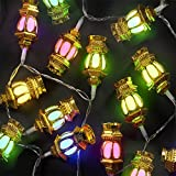 A2Z PolycarbonateFancy Lantern LED Rice Light with 1 Hand Shape Light Key for Diwali Decoration, 9 m, Multi-coloured-38 Bulbs