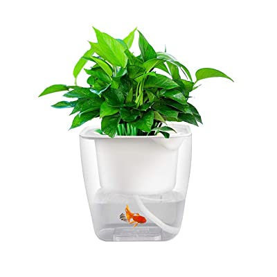 KiKiHome Self Watering Planter, Hydroponics Growing System Transparent Flower Pot, Gardening Starter Kit Small Plant Pot, Self Watering Pot for Gift Giving : Garden & Outdoor