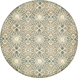 Vintage Traditional Overdyed Multi 8'-Feet Round St. Johns Collection Area rug - Living Dinning Room Bedroom Rugs and Carpets