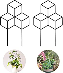 Harelgrow 2 Pack Garden Metal Trellis, Metal Pot Trellis for Indoor Outdoor Climbing Plants Flower Vegetables
