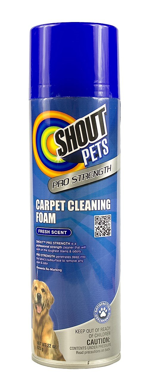 Shout for Pets Pro Strength Carpet Cleaning Foam | Best Pet Carpet Cleaner For All Tough, Set-In Stains, 22 ounces, Fresh Scent