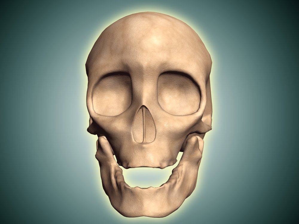 Amazon Posterazzi Conceptual Image Of Human Skull Front View