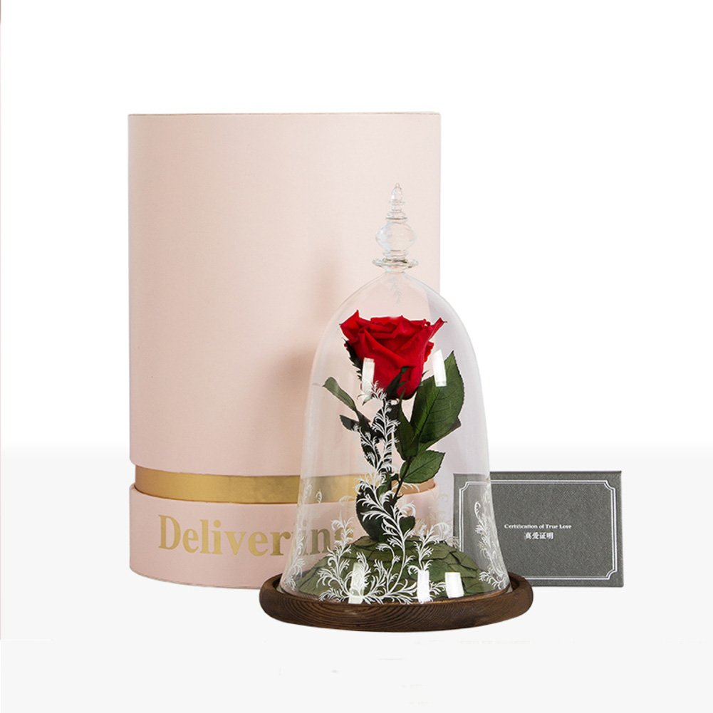 Eternal rose gift box,Glass The beauty and the beast Flowers Natural flower material Eternal Not fade Christmas day Send to your girl friend-red