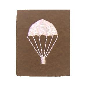 Parachutistes, bien sûr seulement dressés diplôme Badge