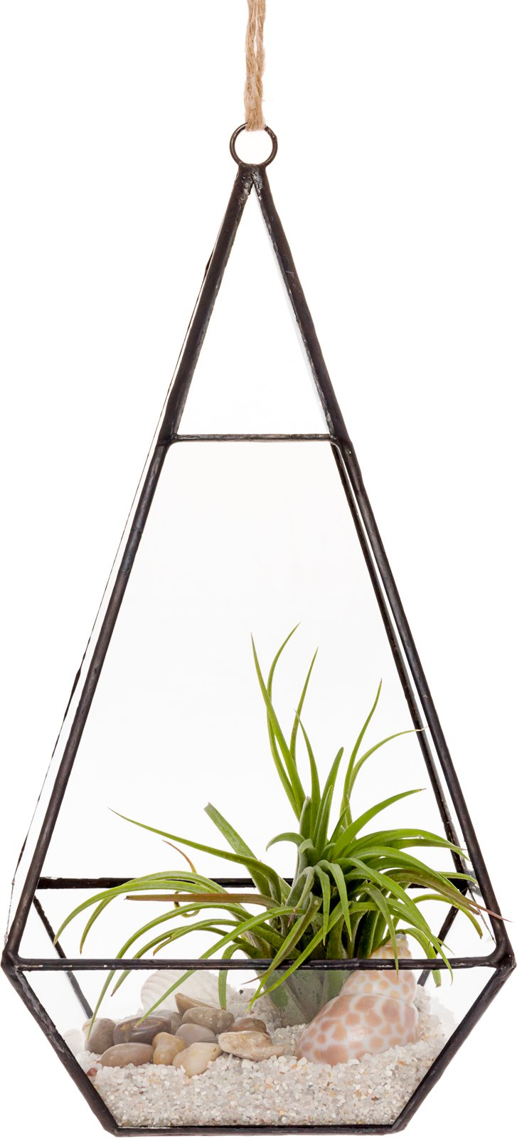 Mindful Design Glass Terrarium - Geometric Large Diamond Desktop Garden Planter (Black) by Mindful Design