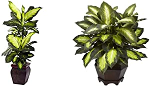 Nearly Natural Golden Dieffenbachia with Decorative Planter, Green & 6720 inches Triple Golden Dieffenbachia with Wood Vase,Green,10.125