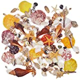 120PCS Sea Shells Bottle Mixed Ocean Beach Seashells-Natural Colorful Seashells Starfish Perfect for Vase Fillers,Wedding Decor Beach Theme Party , Home Decorations,DIY Crafts, Fish Tank,Candle Making
