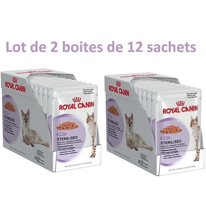 Royal Canin Alimento para gatos esterilizados: Amazon.es: Productos para mascotas