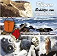 Rügens Schätze am Kreidestrand - für kleine und große Fossiliensammler