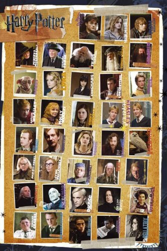 (Harry Potter and the Deathly Hallows - Characters Poster 24 x 36in)