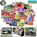 Stickers, Laptop Stickers Car Stickers for Skateboard Computer Water Bottles Bumper Waterproof Vinyl Decals Cool Graffiti Stickers Pack (100 Pcs)