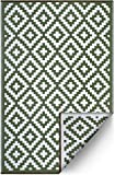 FH Home Indoor/Outdoor Recycled Plastic Floor Mat/Rug - Reversible - Weather & UV Resistant - Leaf Green/White (5 ft x 8 ft)