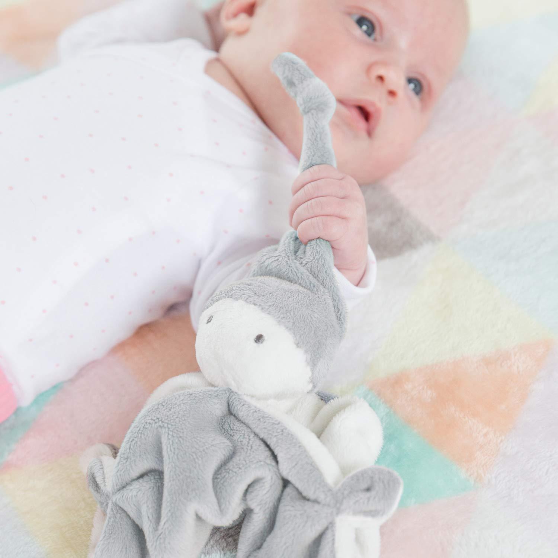 Babyflasche//Schmusetuch//Schnullers Difrax Baby Geschenkset