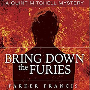 Bring Down the Furies Audiobook