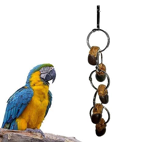 Danigrefinb Juguete para pájaros, Loros, hámster, Ardilla, Nuez ...