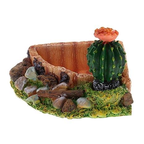 perfk Plato de Agua Comida Tortuga Alimentador Complimentos Pecera Acuario Plantado Fácilmente Cómodo - Triángulo