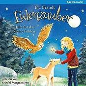 Hilfe für das kleine Fohlen (Eulenzauber 6) | Ina Brandt