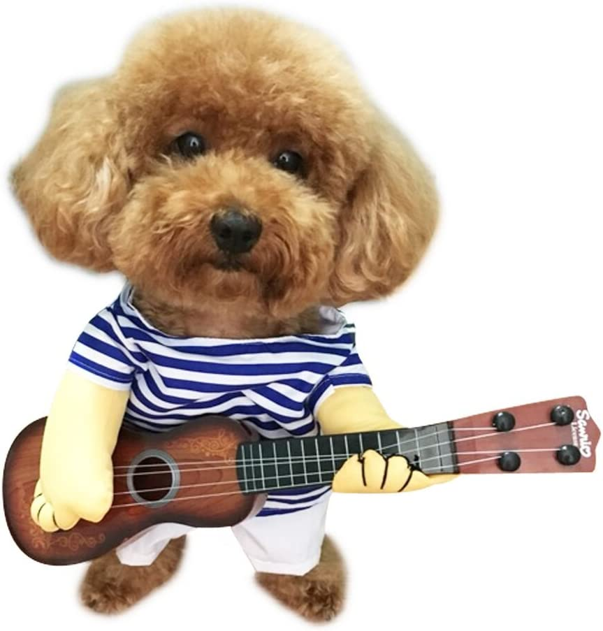 Dog Playing Guitar Costume