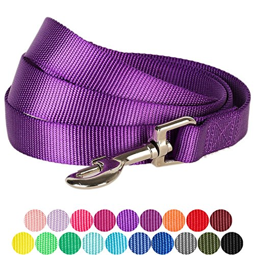 """Blueberry Pet 19 Colors Durable Classic Dog Leash 5 ft x 3/4"""", Dark Orchid, Medium, Basic Nylon Leashes for Dogs"""