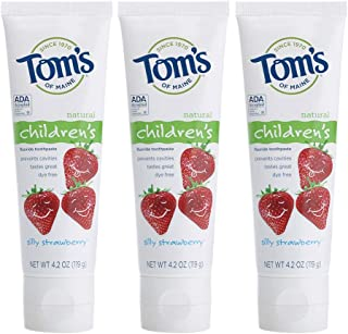 product image for Tom's of Maine Children's Natural Fluoride Toothpaste, Silly Strawberry 4.2 oz (Pack of 6)