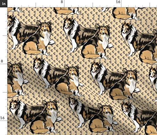 Spoonflower Collies Fabric - Rough Collie Sable Fawn Paw Prints by Dogdaze Printed on Minky Fabric by The Yard