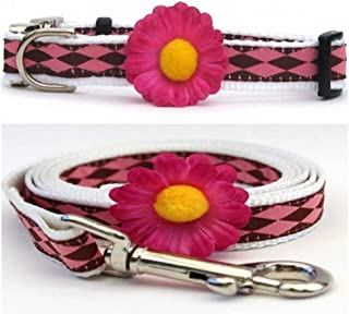 "product image for Diva-Dog 'Gerber Daisy Pink' Custom 5/8"" Wide Dog Collar with Plain or Engraved Buckle, Matching Leash Available - Teacup, XS/S"