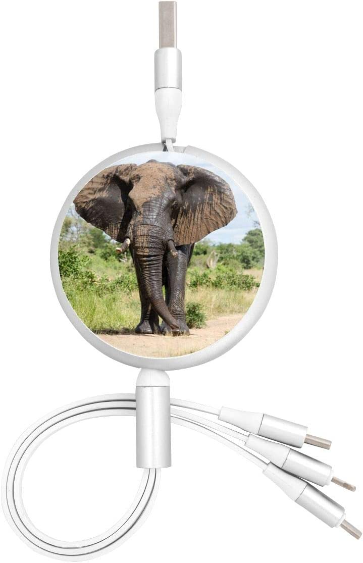 Multi Quick Charging Cable Funny Happy Red Elephant Multi 3 in 1 Retractable Multi USB Cable Charger with Micro USB//Type C Compatible with Cell Phones Tablets and More