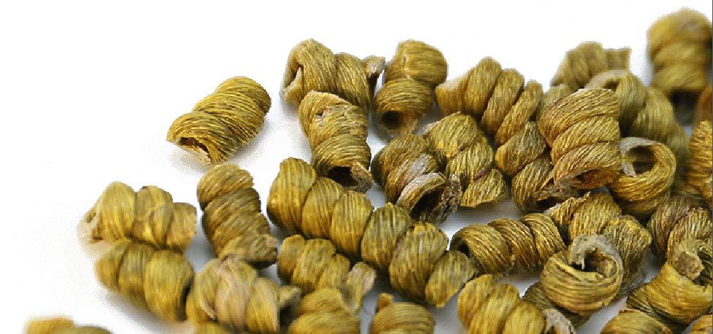 OUZ123 Huo Shan 4-year Herba Dendrodii Officinalis Maple Bucket Tie Pi Shi Hu 霍山铁皮石斛 10g/0.35oz