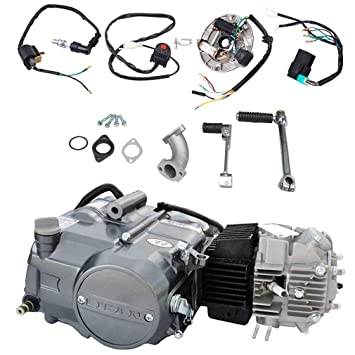 Amazon com: TDPRO Lifan 125cc Engine Motor And Wire Harness
