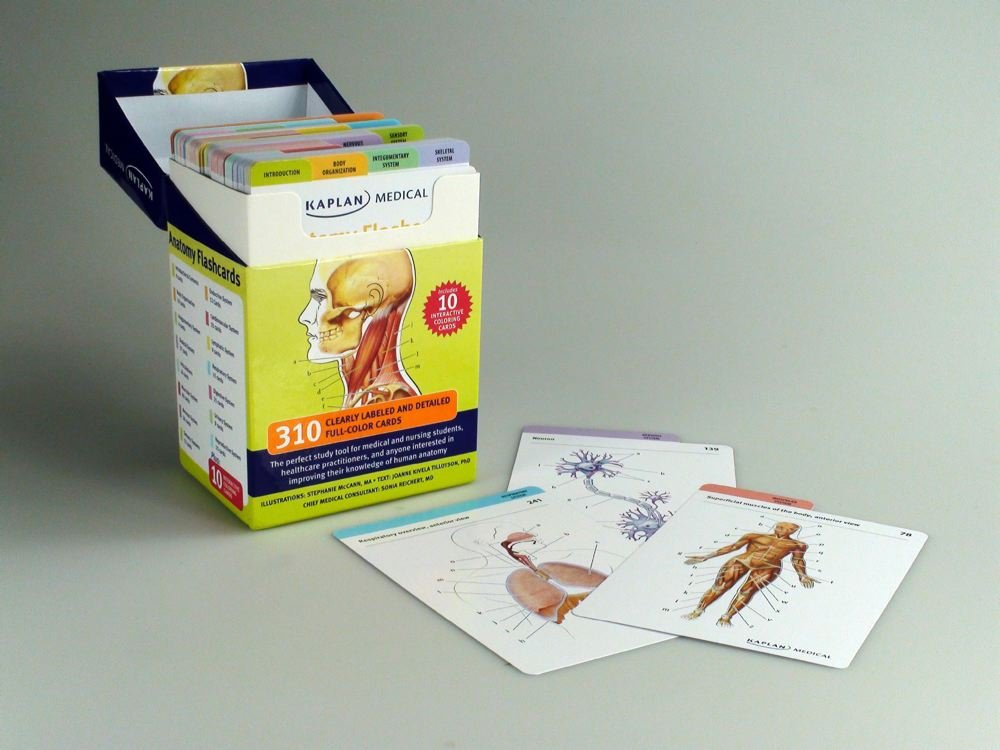 Anatomy Flashcards Amazon Stephanie Mccann Joanne Tillotson