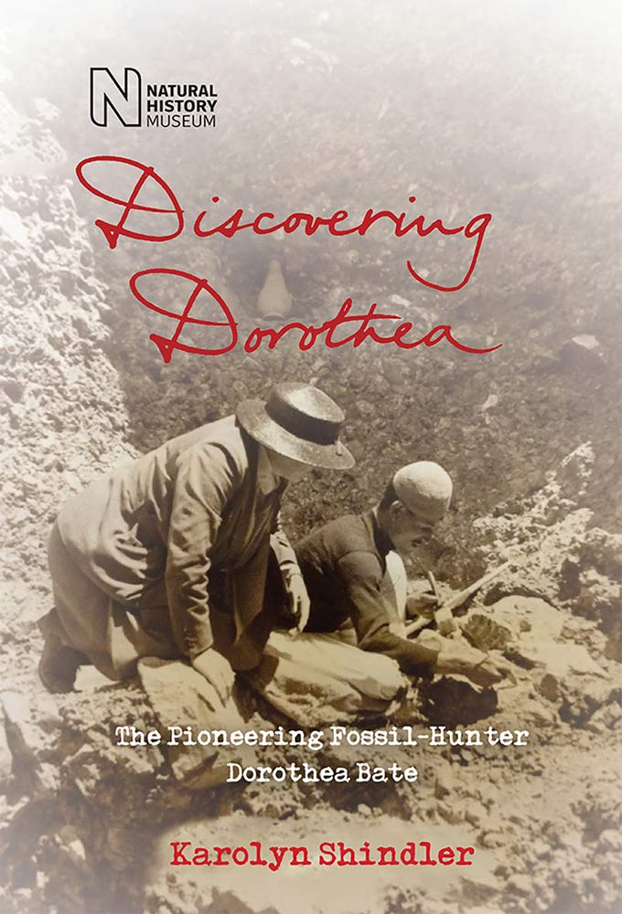 Image result for discovering dorothea