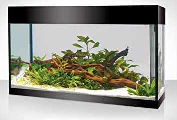 Askoll Aquarium Pure Aquarium Kit Xl Absolute Black Amazon De