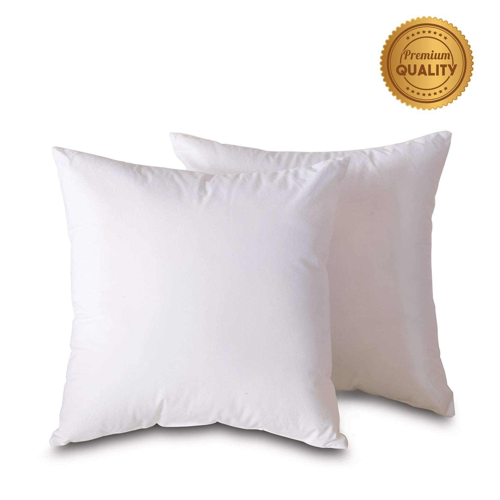 Plankroad Home Décor 27x27 Hypoallergenic Luxury 100% Small Feather Square Euro Pillow Insert, 100% Cambric Cotton Shell, Never Vacuum-Packed, Odorless, Made in USA, Set of 2