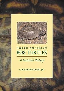 box turtles cook tess