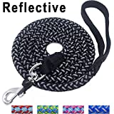 #9: Mycicy Mountain Climbing Rope Dog Leash - 6 Foot Reflective Nylon Braided Heavy Duty Dog Training Leash for Large and Medium Dogs Walking Leads (6ft, Black)
